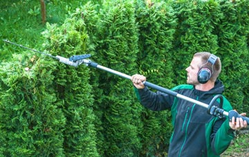 Marlow hedge trimming costs