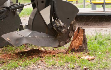 professional Marlow stump grinding services