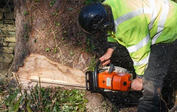 tree removal Marlow