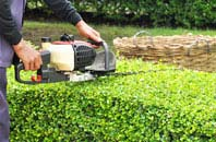 Marlow hedge trimming services