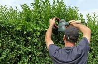 free Marlow hedge trimming quotes