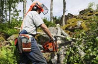 Marlow tree removal services